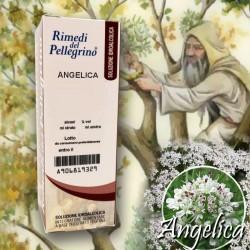 Soluzione Idroalcolica Angelica 50ml