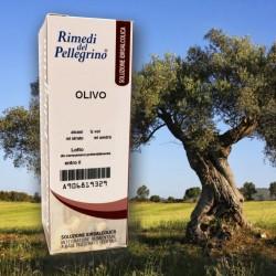 Soluzione Idroalcolica Olivo 50ml