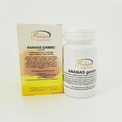 Integratore Ananas Gambo Compresse 100Pz 400mg