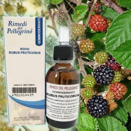 Gemmoderivato Rovo,Rubus Fruticosus 50ml