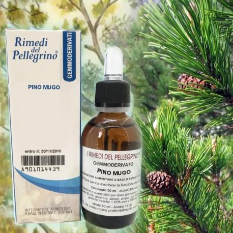 Gemmoderivato Pino Mugo,Pinus Montana 50 ml