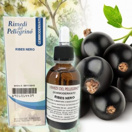 Gemmoderivato Ribes Nero , Ribes Nigrum 50ml