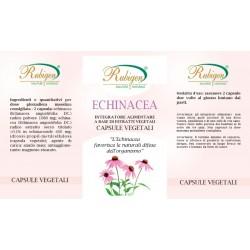 Integratore Echinacea 60 Op 295 mg