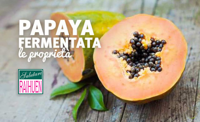 papaya fermentata proprieta usi benefici digestione