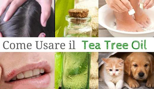 come usare tea tree oil raihuen