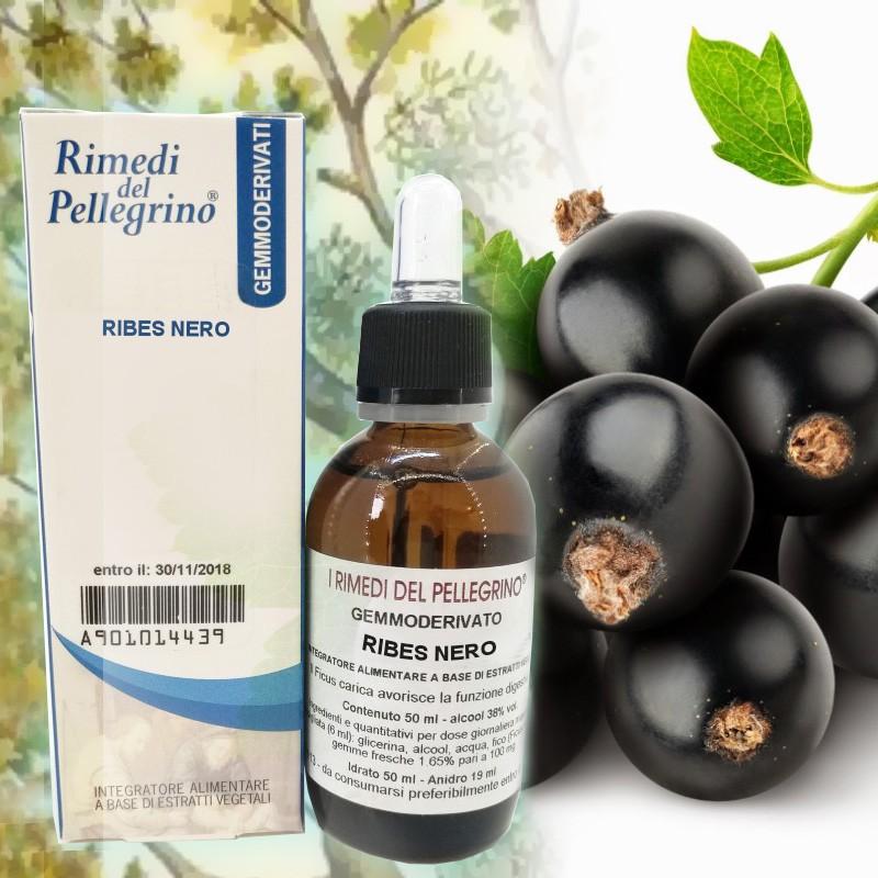ribes-nero-cura-allergie-rimedio.naturale