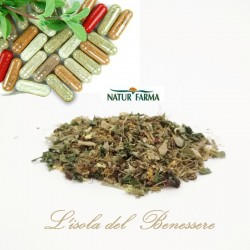 Integratore Lassativi The Midro Busta 1000 gr