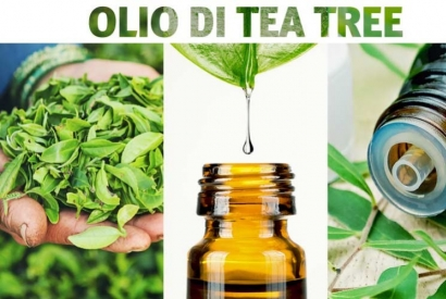 L'antibatterico più potente? Il Tea Tree Oil
